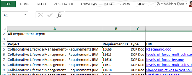 Generated Microsoft Excel document output