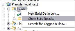 Accessing the Builds view