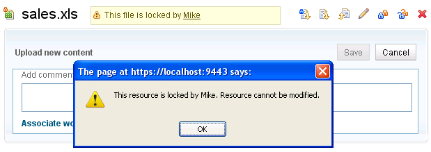 Zoe cannot edit a file locked by Mike